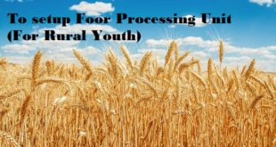 Madhya Pradesh Government's initiative to Help Rural Youth for Set up Food Processing Units